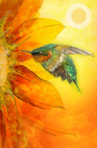 Sunflower Hummer by Ushana