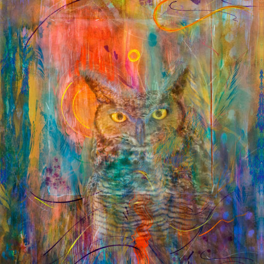 Ssunrise and Owl by Ushana